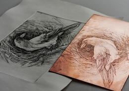 چاپ هنری چیست و هر آنچه باید بدانید
